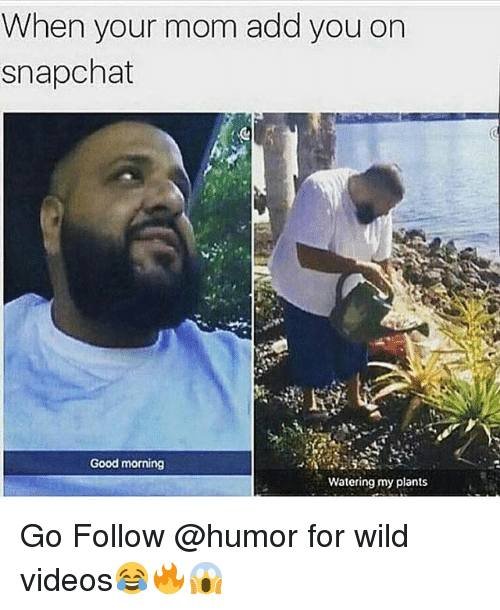 Funny, Snapchat, and Videos: When your mom add you on  snapchat  Good morning  Watering my plants Go Follow @humor for wild videos😂🔥😱