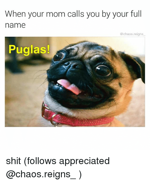 Memes, Shit, and Mom: When your mom calls you by your full  name  @chaos.reigns  Puglas! shit (follows appreciated @chaos.reigns_ )