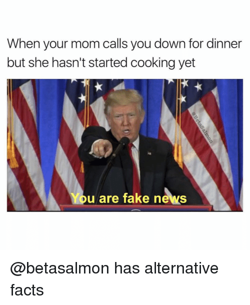Alternator: When your mom calls you down for dinner  but she hasn't started cooking yet  You are fake news @betasalmon has alternative facts