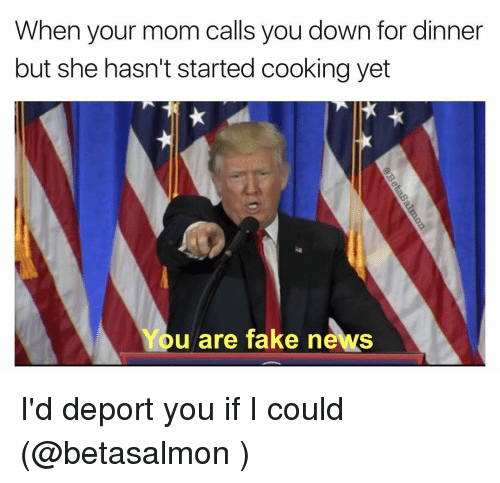 Fake, Memes, and Moms: When your mom calls you down for dinner  but she hasn't started cooking yet  You are fake news I'd deport you if I could (@betasalmon )