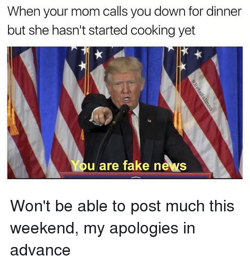 You Are Fake News: When your mom calls you down for dinner  but she hasn't started cooking yet  You are fake news Won't be able to post much this weekend, my apologies in advance