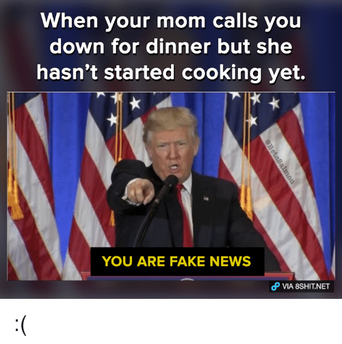 You Are Fake News: When your mom calls you  down for dinner but she  hasn't started cooking yet.  YOU ARE FAKE NEWS  VIA 8SHITNET :(