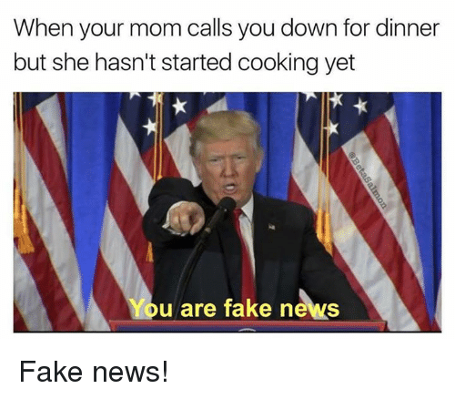 Memes, 🤖, and Down: When your mom calls you down for dinner  but she hasn't started cooking yet  You are fake news Fake news!