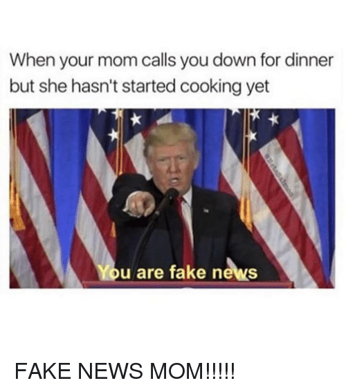 Memes, 🤖, and Down: When your mom calls you down for dinner  but she hasn't started cooking yet  You are fake news FAKE NEWS MOM!!!!!