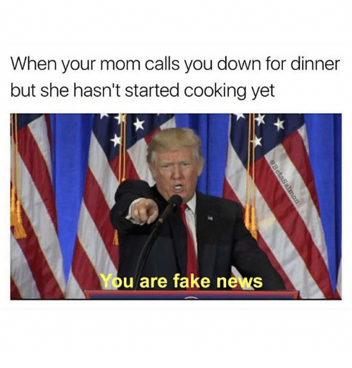 You Are Fake News: When your mom calls you down for dinner  but she hasn't started cooking yet  You are fake news