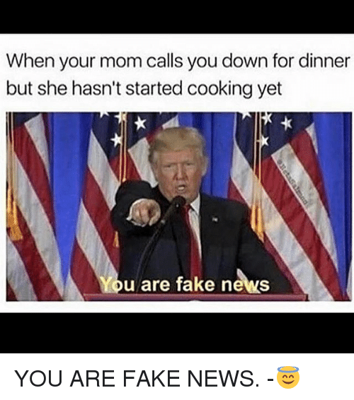 Fake, Memes, and News: When your mom calls you down for dinner  but she hasn't started cooking yet  u are fake news YOU ARE FAKE NEWS. -😇