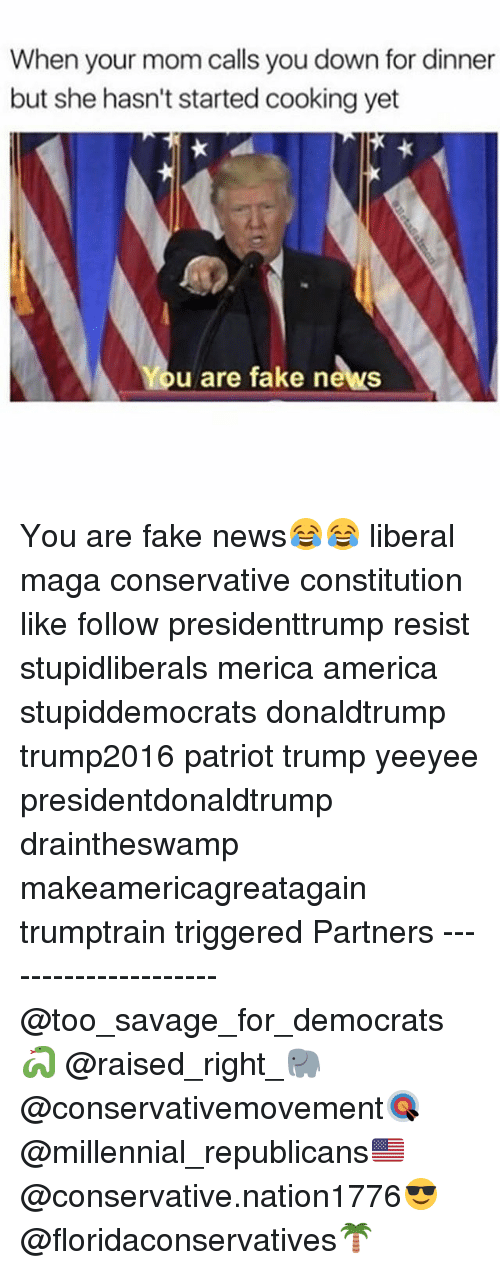 You Are Fake News: When your mom calls you down for dinner  but she hasn't started cooking yet  u are fake news You are fake news😂😂 liberal maga conservative constitution like follow presidenttrump resist stupidliberals merica america stupiddemocrats donaldtrump trump2016 patriot trump yeeyee presidentdonaldtrump draintheswamp makeamericagreatagain trumptrain triggered Partners --------------------- @too_savage_for_democrats🐍 @raised_right_🐘 @conservativemovement🎯 @millennial_republicans🇺🇸 @conservative.nation1776😎 @floridaconservatives🌴