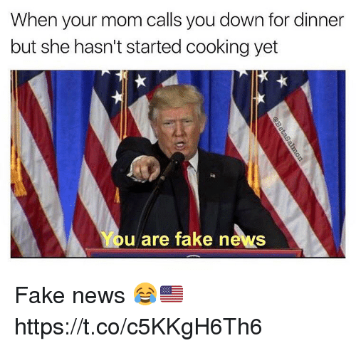 Fake, News, and Mom: When your mom calls you down for dinner  but she hasn't started cooking yet  You are fake news Fake news 😂🇺🇸 https://t.co/c5KKgH6Th6