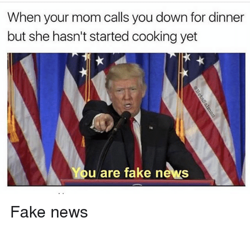 Fake, Memes, and News: When your mom calls you down for dinner  but she hasn't started cooking yet  u are fake news Fake news