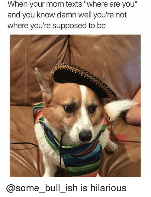 """Dank Memes, Hilarious, and Texts: When your mom texts """"where are you""""  and you know damn well you're not  where you're supposed to be @some_bull_ish is hilarious"""