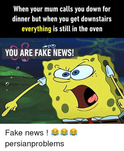 Fake, Memes, and News: When your mum calls you down for  dinner but when you get downstairs  everything is still in the oven  YOU ARE FAKE NEWS! Fake news ! 😂😂😂 persianproblems