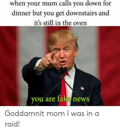 Fake, News, and Mom: when your mum calls you down for  dinner but you get downstairs and  it's still in the oven  you are fake news Goddamnit mom I was in a raid!