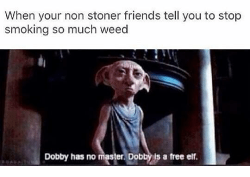 Stop Smoking: When your non stoner friends tell you to stop  smoking so much weed  Dobby has no master. Dobbyls a free ef.