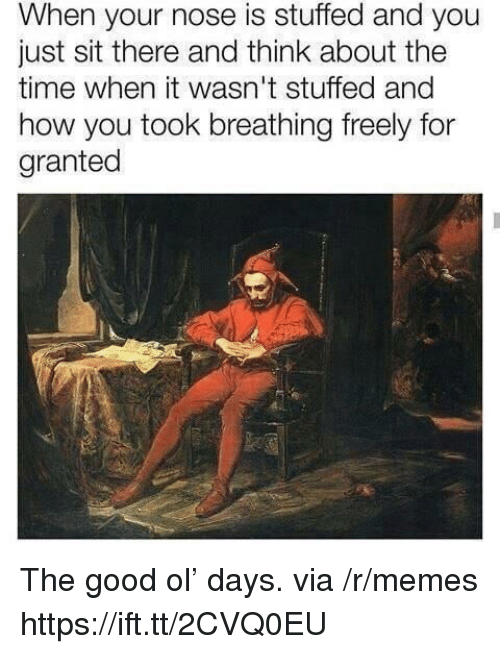 Memes, Good, and Time: When your nose is stuffed and you  just sit there and think about the  time when it wasn't stuffed and  how you took breathing freely for  granted The good ol' days. via /r/memes https://ift.tt/2CVQ0EU