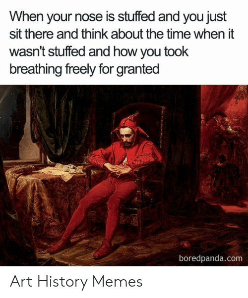 Art History Memes: When your nose is stuffed and you just  sit there and think about the time when it  wasn't stuffed and how you took  breathing freely for granted  boredpanda.com Art History Memes