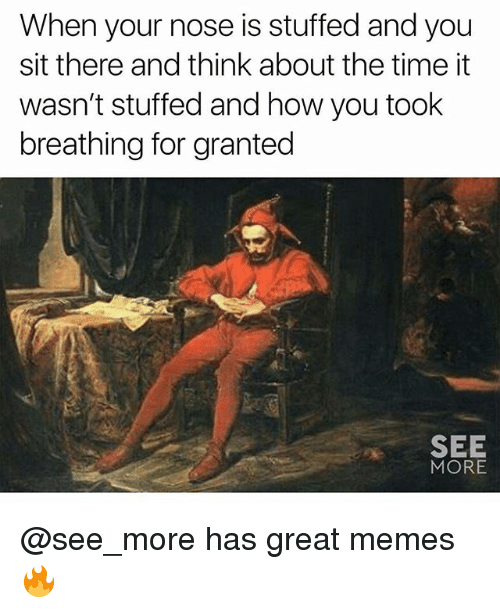 Memes, Time, and 🤖: When your nose is stuffed and you  sit there and think about the time it  wasn't stuffed and how you took  breathing for granted  SEE  MORE @see_more has great memes 🔥