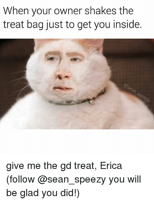 Memes, 🤖, and Will: When your owner shakes the  treat bag just to get you inside. give me the gd treat, Erica (follow @sean_speezy you will be glad you did!)