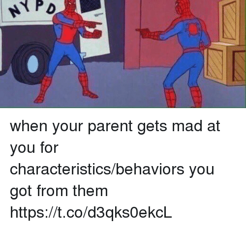 Girl Memes, Mad, and Got: when your parent gets mad at you for characteristics/behaviors you got from them https://t.co/d3qks0ekcL