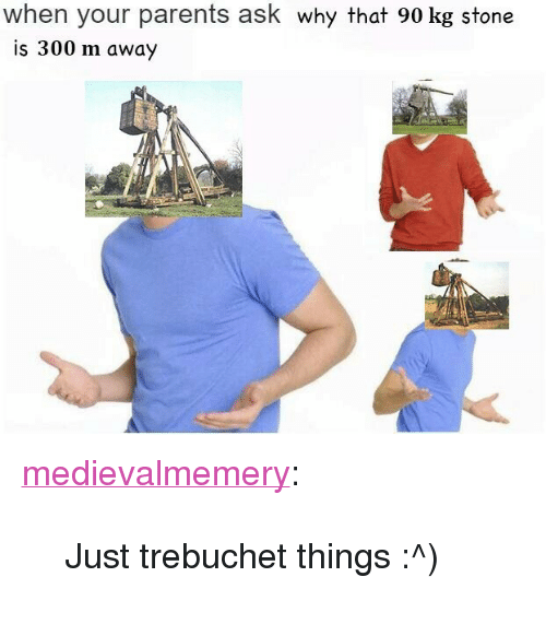 "trebuchet: when your parents ask why that 90 kg stone  is 300 m away <p><a href=""http://medievalmemery.tumblr.com/post/151873247403/just-trebuchet-things"" class=""tumblr_blog"">medievalmemery</a>:</p> <blockquote><p>Just trebuchet things :^)</p></blockquote>"