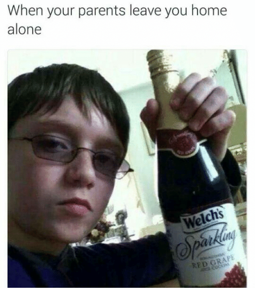 Being Alone, Home Alone, and Parents: When your parents leave you home  alone  Welchs  RED G
