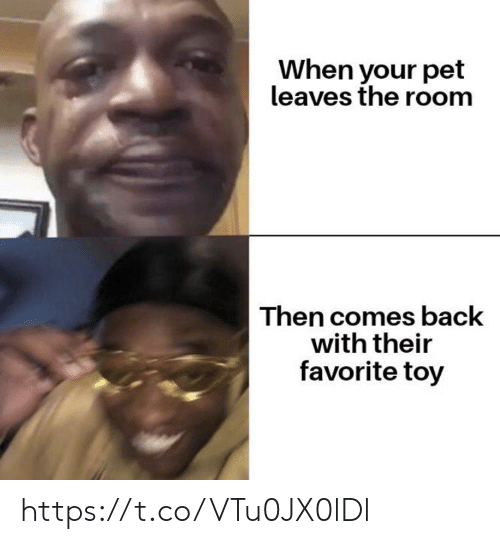 the room: When your pet  leaves the room  Then comes back  with their  favorite toy https://t.co/VTu0JX0lDl