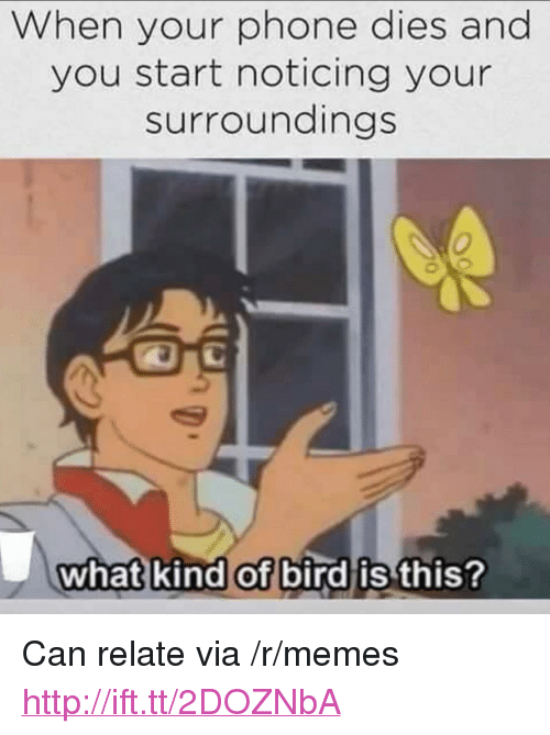 """What Kind Of Bird Is This: When your phone dies and  you start noticing your  surroundings  what kind of bird is this <p>Can relate via /r/memes <a href=""""http://ift.tt/2DOZNbA"""">http://ift.tt/2DOZNbA</a></p>"""