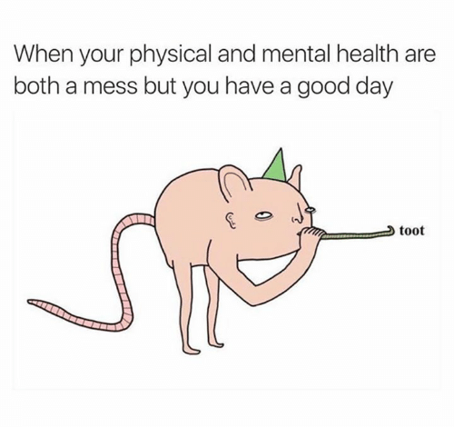 Memes, Physical, and Physics: When your physical and mental health are  both a mess but you have a good day  toot