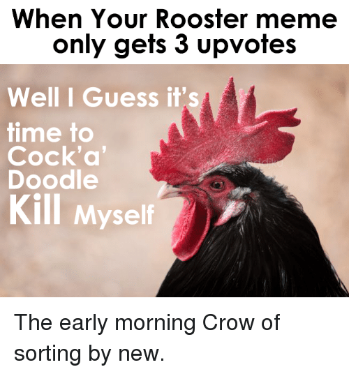 Rooster Meme: When Your Rooster meme  only gets 3 upvotes  Well I Guess it's  time to  Cock'a  Doodle  Kill Myself