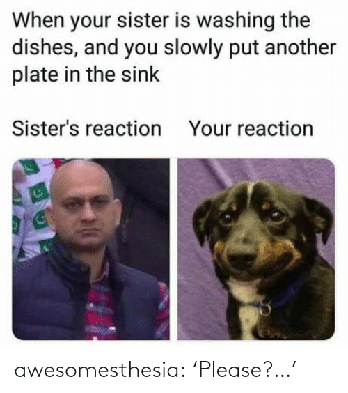 sisters: When your sister is washing the  dishes, and you slowly put another  plate in the sink  Sister's reaction  Your reaction awesomesthesia:  'Please?…'