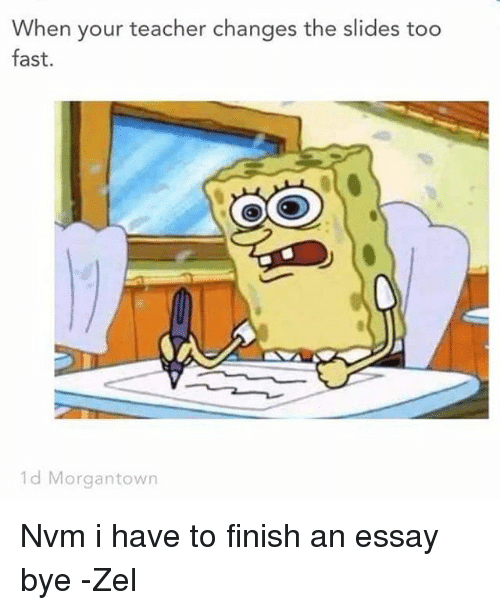 I HAVE AN ESSAY TO FINISH?