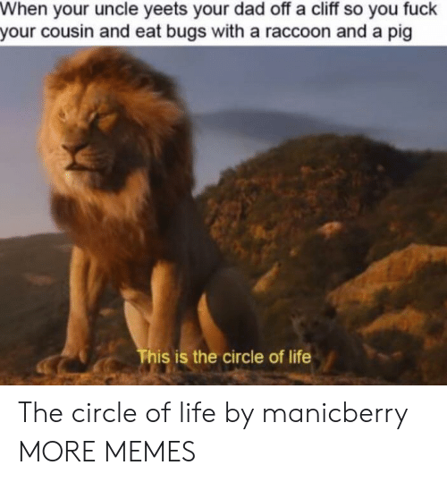 Raccoon: When your uncle yeets your dad off a cliff so you fuck  your cousin and eat bugs with a raccoon and a pig  This is the circle of life The circle of life by manicberry MORE MEMES