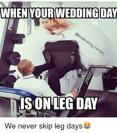 leg day meme dog - photo #20