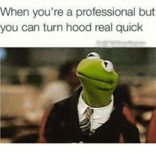 Kermit the Frog, Professional, and Yours: When you're a professional but  you can turn hood real quick