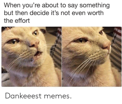 About To Say Something: When you're about to say something  but then decide it's not even worth  the effort Dankeeest memes.