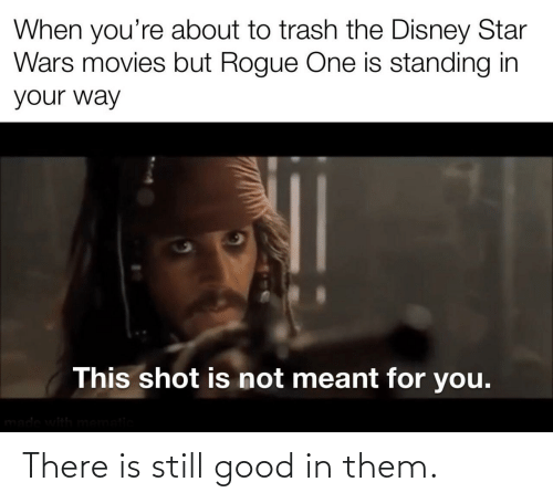Rogue: When you're about to trash the Disney Star  Wars movies but Rogue One is standing in  your way  This shot is not meant for you.  made with mematic There is still good in them.