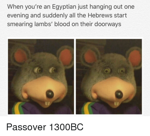 lambs: When you're an Egyptian just hanging out one  evening and suddenly all the Hebrews start  smearing lambs' blood on their doorways Passover 1300BC