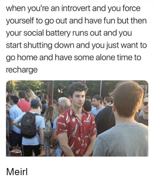 an introvert: when you're an introvert and you force  yourself to go out and have fun but then  your social battery runs out and you  start shutting down and you just want to  go home and have some alone time to  recharge Meirl