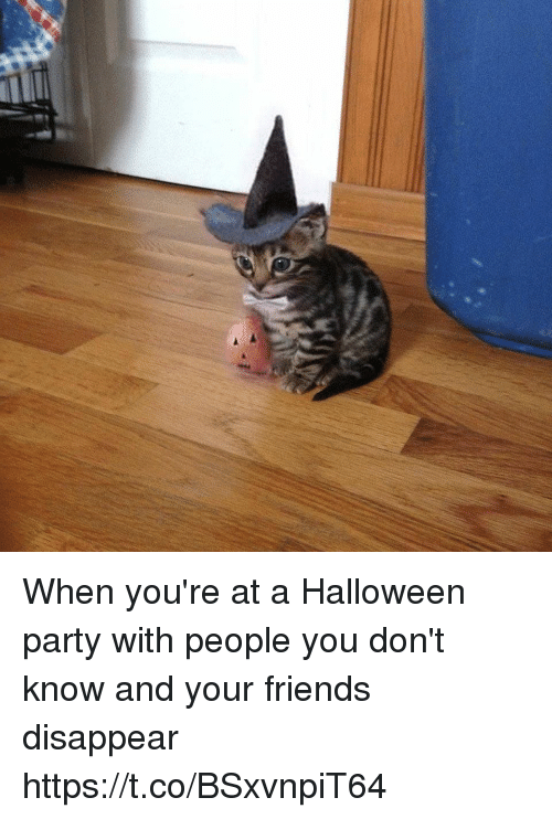 Friends, Halloween, and Party: When you're at a Halloween party with people you don't know and your friends disappear https://t.co/BSxvnpiT64