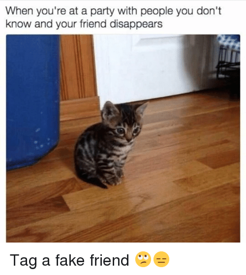 Fake, Funny, and Party: When you're at a party with people you don't  know and your friend disappears Tag a fake friend 🙄😑