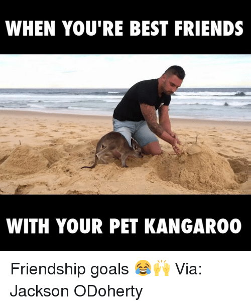 When Your Best Friend: WHEN YOU'RE BEST FRIENDS  WITH YOUR PET KANGAROO Friendship goals 😂🙌  Via: Jackson ODoherty