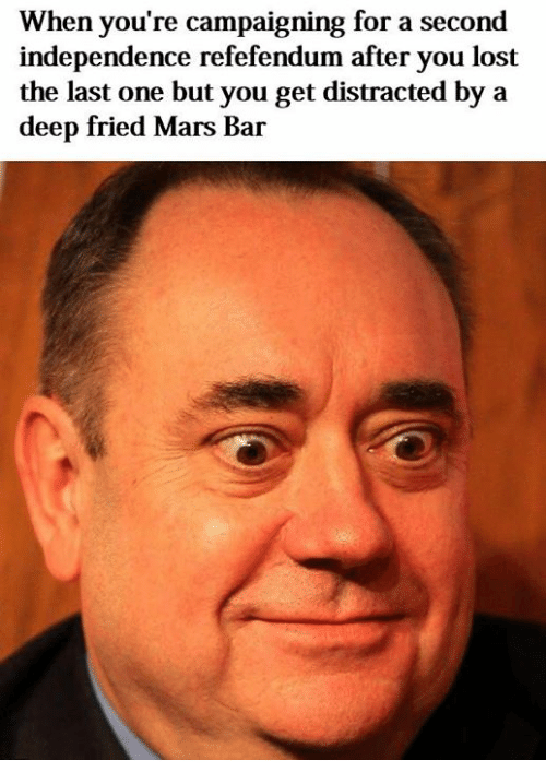 Dank Memes: When you're campaigning for a second  independence refefendum after you lost  the last one but you get distracted by a  deep fried Mars Bar