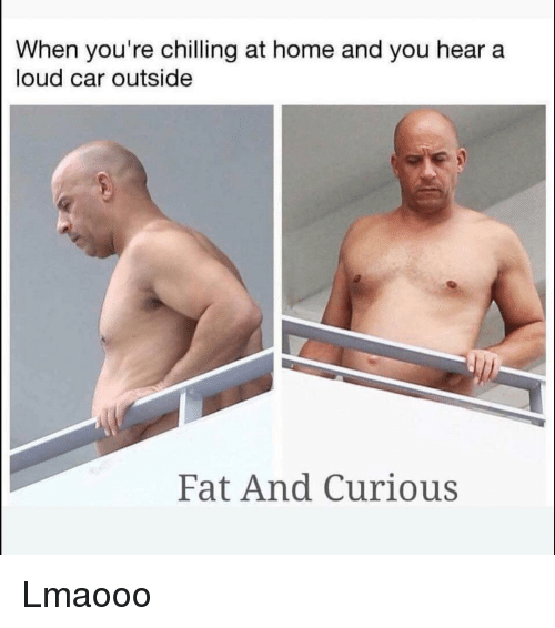 Funny, Home, and Fat: When you're chilling at home and you hear a  loud car outside  Fat And Curious Lmaooo