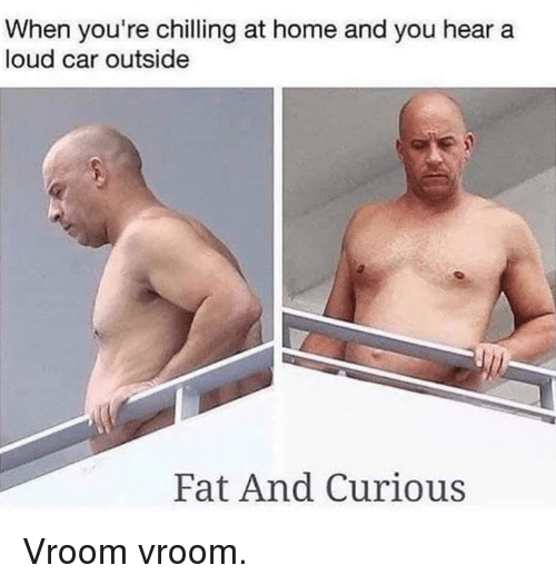 vroom: When you're chilling at home and you hear a  loud car outside  Fat And Curious Vroom vroom.