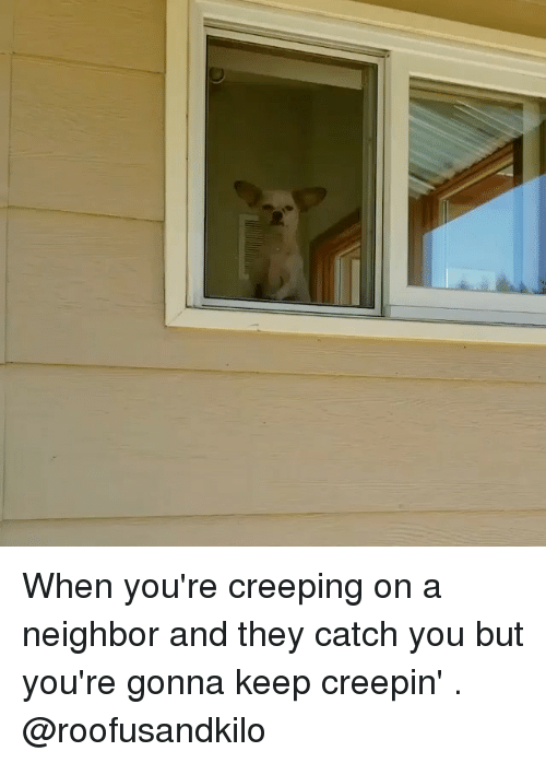 Memes, 🤖, and They: When you're creeping on a neighbor and they catch you but you're gonna keep creepin' . @roofusandkilo