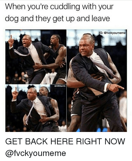 Cuddling With You: 25+ Best Memes About Get Back Here