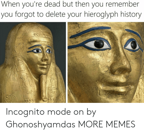 Incognito Mode: When you're dead but then you remember  you forgot to delete your hieroglyph history Incognito mode on by Ghonoshyamdas MORE MEMES