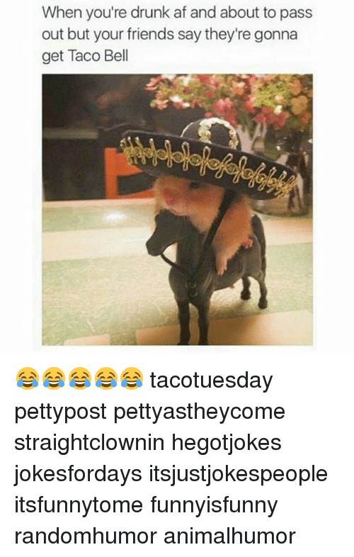 Af, Memes, and Taco Bell: When you're drunk af and about to pass  out but your friends say they're gonna  get Taco Bell 😂😂😂😂😂 tacotuesday pettypost pettyastheycome straightclownin hegotjokes jokesfordays itsjustjokespeople itsfunnytome funnyisfunny randomhumor animalhumor