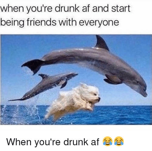 Af, Drunk, and Memes: when you're drunk af and start  being friends with everyone When you're drunk af 😂😂