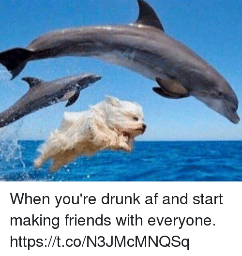 Af, Drunk, and Friends: When you're drunk af and start making friends with everyone. https://t.co/N3JMcMNQSq