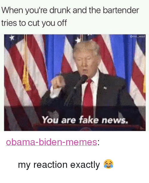 """Drunk, Fake, and Memes: When you're drunk and the bartender  tries to cut you off  omo wad  You are fake news. <p><a href=""""https://obama-biden-memes.tumblr.com/post/157367603061/my-reaction-exactly"""" class=""""tumblr_blog"""" target=""""_blank"""">obama-biden-memes</a>:</p><blockquote><p>my reaction exactly 😂</p></blockquote>"""